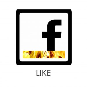 Stellar Facebook Icon