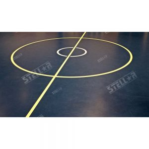 Thumbnail Netball Court Line Markings Centre Circle Indoor