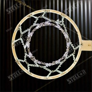Netball Hoop Directly Above Eye Level Metal Chain Mesh Indoors